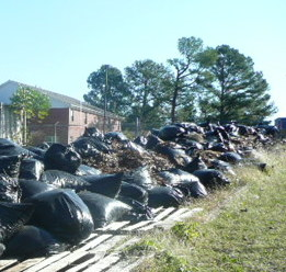 Students Spent Saturday Cleaning Their Community